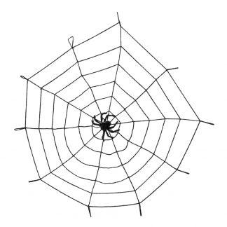Decoratief spinnenweb met spin.