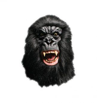 masker aap