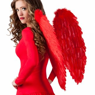 vleugels veren wings rood